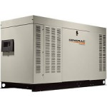 Briggs & Stratton 76150 - 48 kW Liquid Cooled Standby Generator (Premium-Grade) (120/240V Single-Phase)